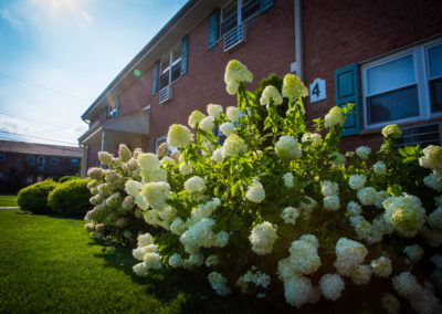 Beautiful flowers bloowming outside of apartments for rent in Nanuet, NY